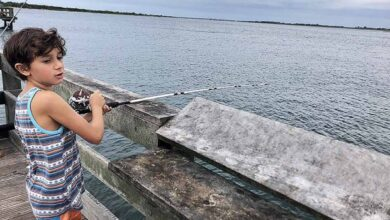 Photo of Nassau – The Epicenter of First-Class Fishing