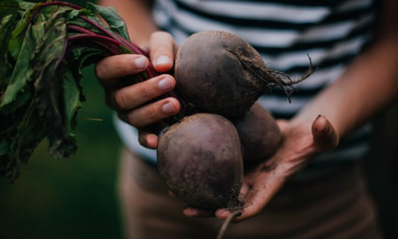 Why are Beetroots So Healthy for Men
