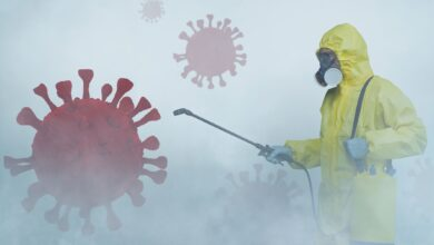 Photo of What to Expect From Disinfectant Cleaning Services