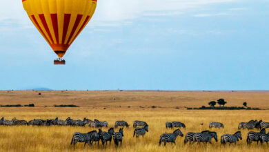 Photo of Best Things To Do in Kenya Tour packages