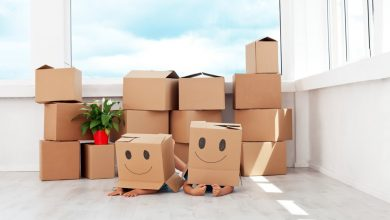Photo of What Types of Services you Can Get from Packers and Movers in Faridabad
