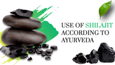 Photo of What are the Uses of Shilajit according to Ayurveda?