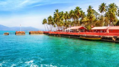 Photo of Andaman: A Nature Lover's Paradise