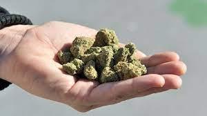 cannabis dispensary in London