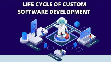 Photo of The Steps of Custom Software Development Life Cycle