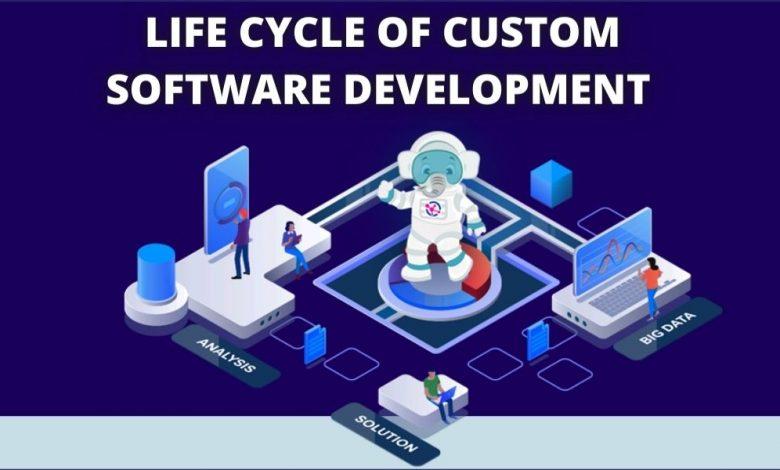 Custom Software Development Life Cycle