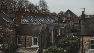 Photo of Protect Your House by Investing in the Right Type of Roof