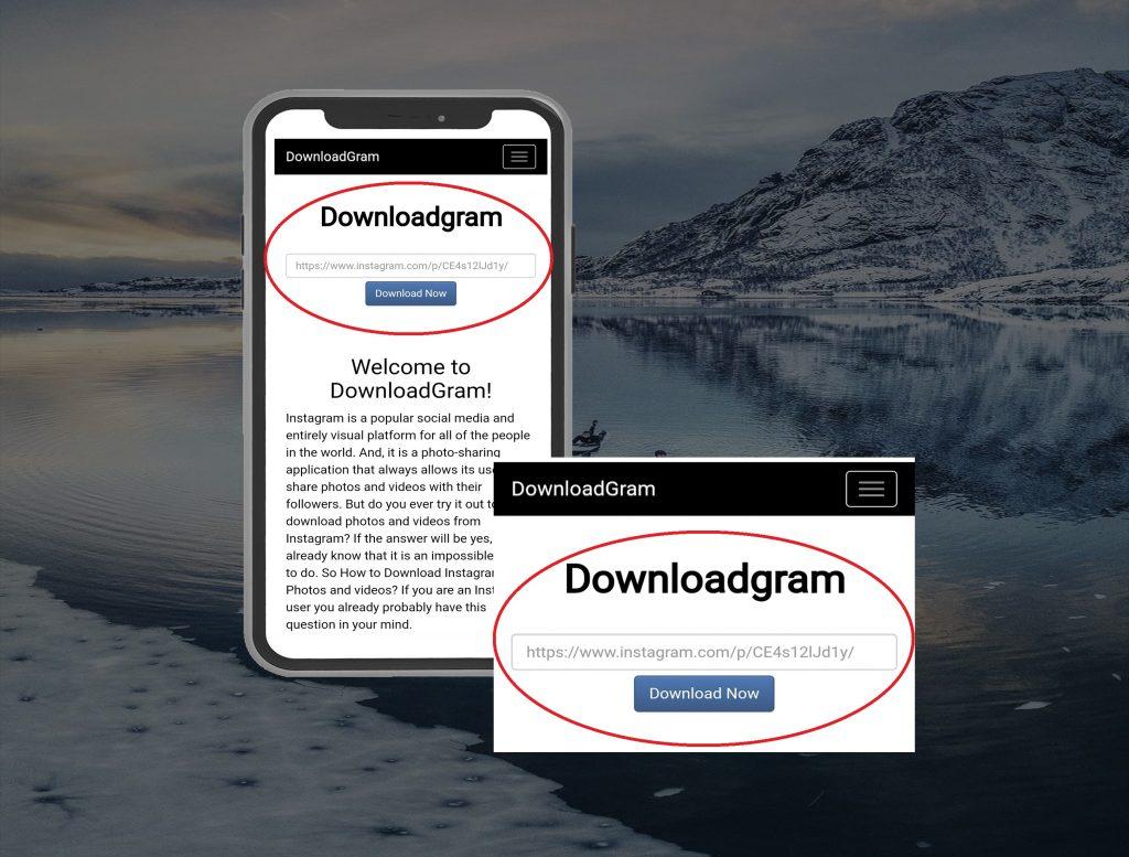 downloadgram-input-box