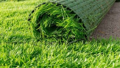 Photo of What Types Of Places That the Artificial Grass Suppliers Geelong Can Easily Deal With?