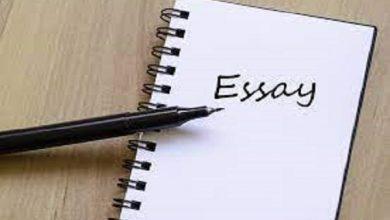 Photo of Essay on Beti Bachao Beti Bachao Beti Padhao Scheme