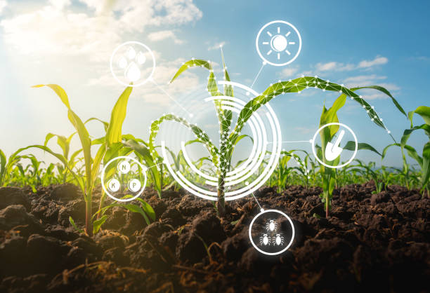 How to use an Agriculture Equipment Market