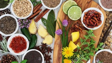Photo of How useful is a Natural Remedy for Urinary Tract infections?
