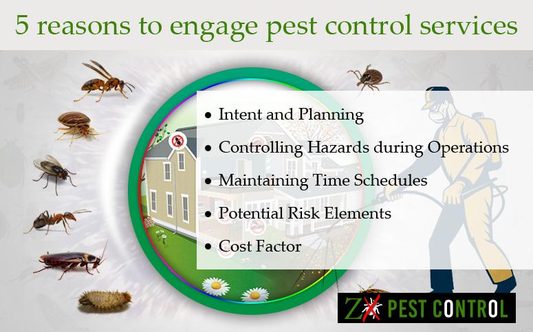 Pest Control Noida
