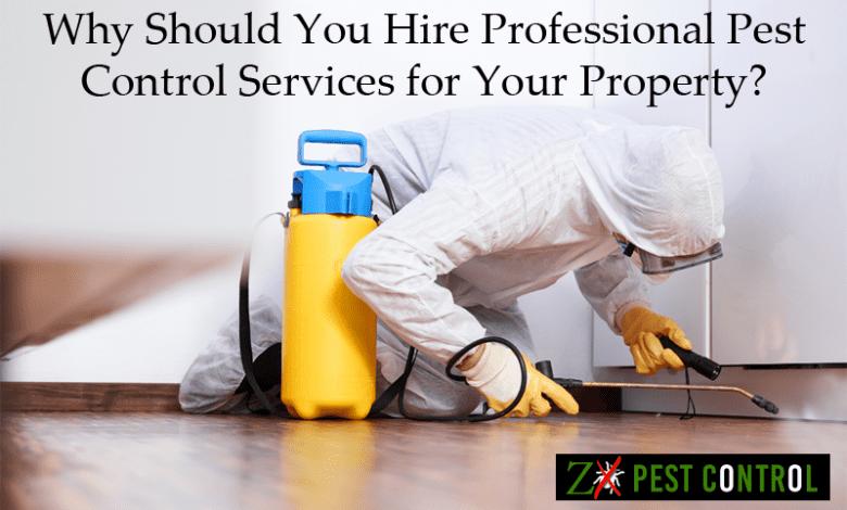 Pest Control Services Noida