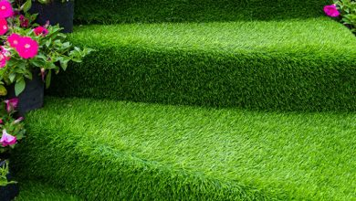 Photo of Various Fields The Artificial Grass Suppliers Melbourne Suggest You To Installing The Products