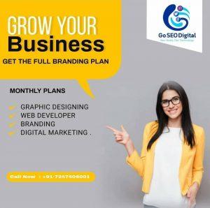 Digital Marketing Company in Bilaspur - Go SEO Digital