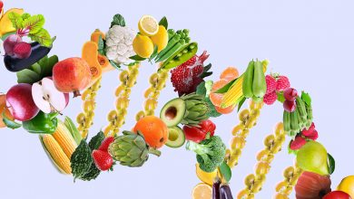 Photo of DNA Diet Testing – Is a Personalized Diet Best for Weight Loss?